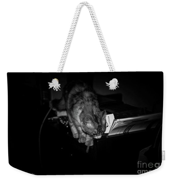 Weekender Tote Bag featuring the photograph Lili At Night Activity by Arik Baltinester