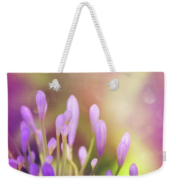 Lily Of The Nile Buds In Summer  Weekender Tote Bag
