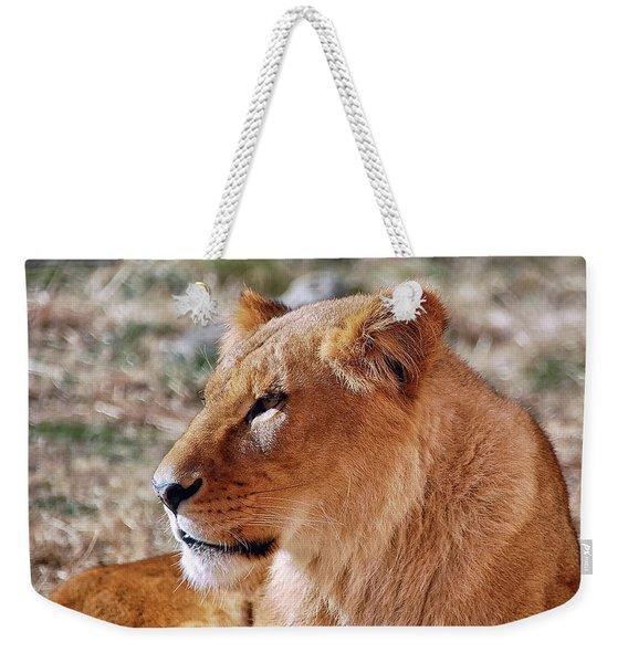 Lion Around Weekender Tote Bag