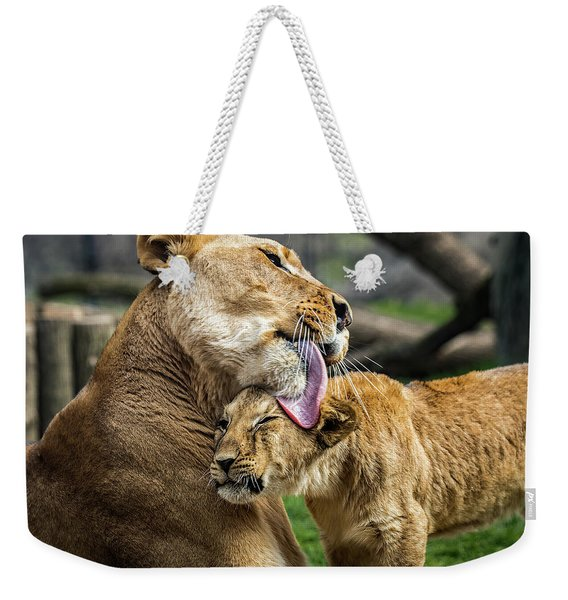 Lion Mother Licking Her Cub Weekender Tote Bag