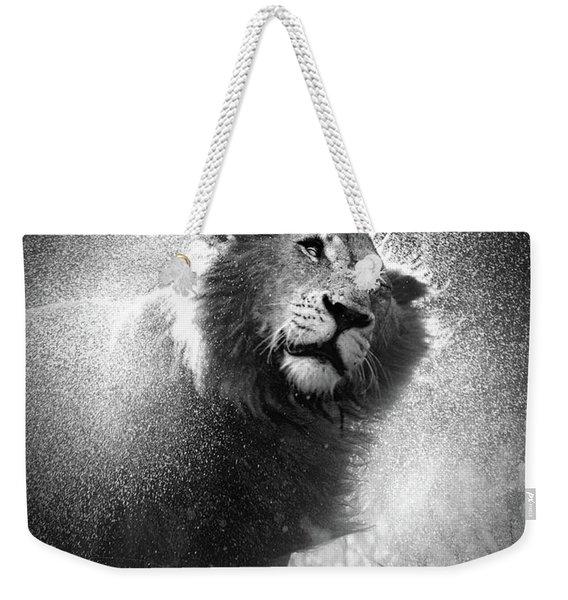 Lion Shaking Off Water Weekender Tote Bag