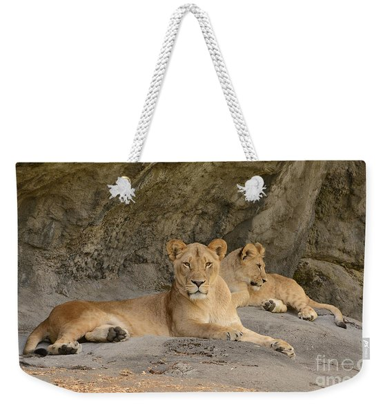 Female Lion And Cub Weekender Tote Bag
