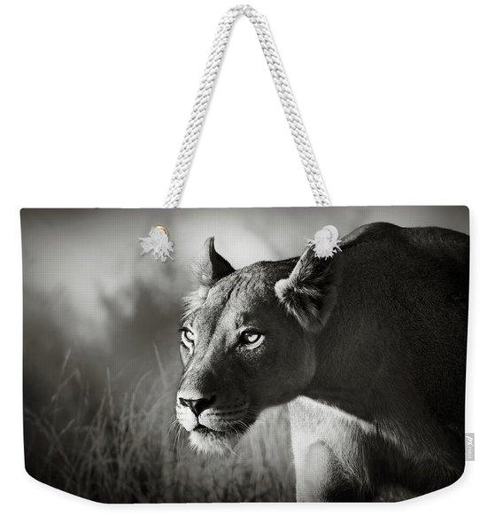 Lioness Stalking Weekender Tote Bag
