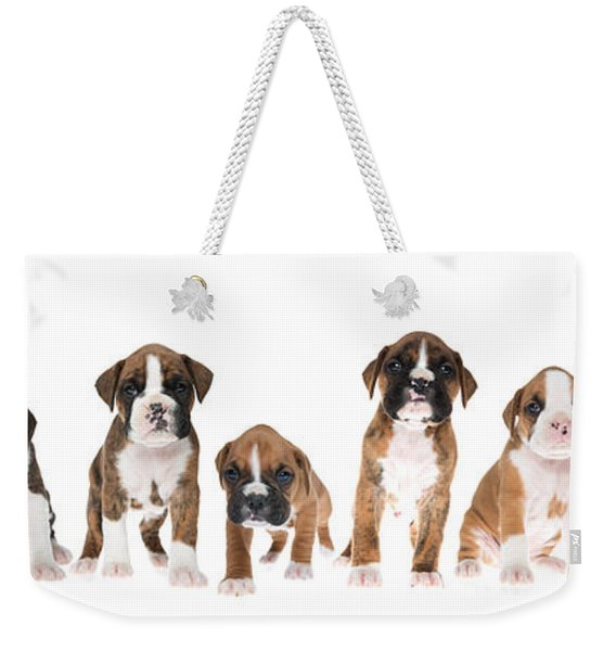 Litter Of Boxer Puppies Weekender Tote Bag