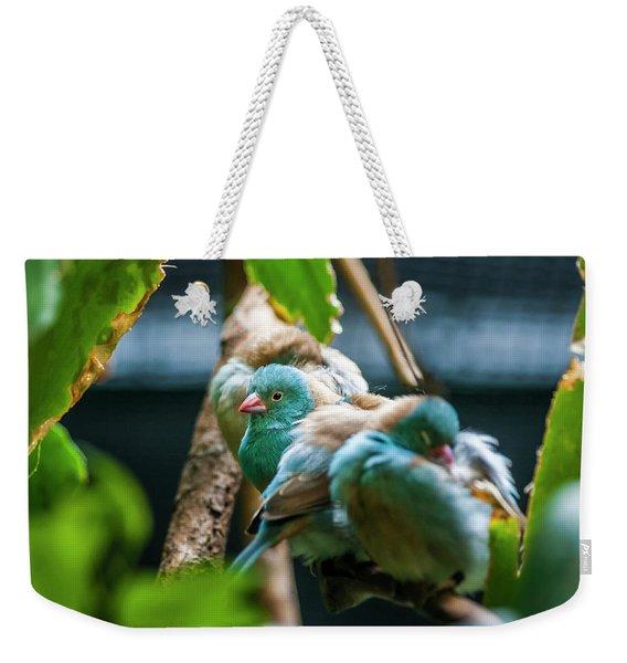 Little Birds Weekender Tote Bag