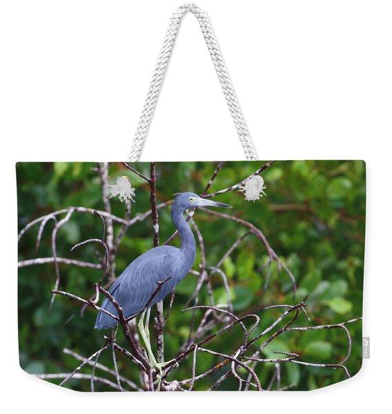 Little Blue At Trinidad's Caroni Swamp Weekender Tote Bag
