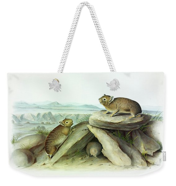 Little-chief Hare Weekender Tote Bag