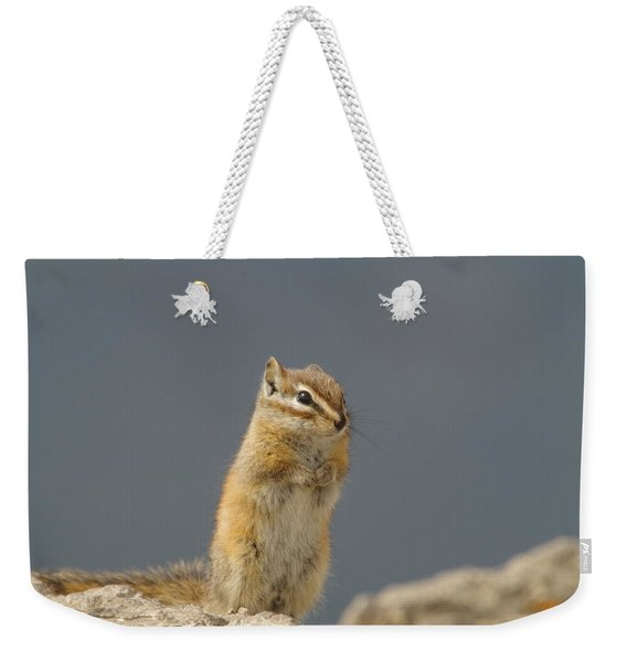 Little Chipmunk Weekender Tote Bag