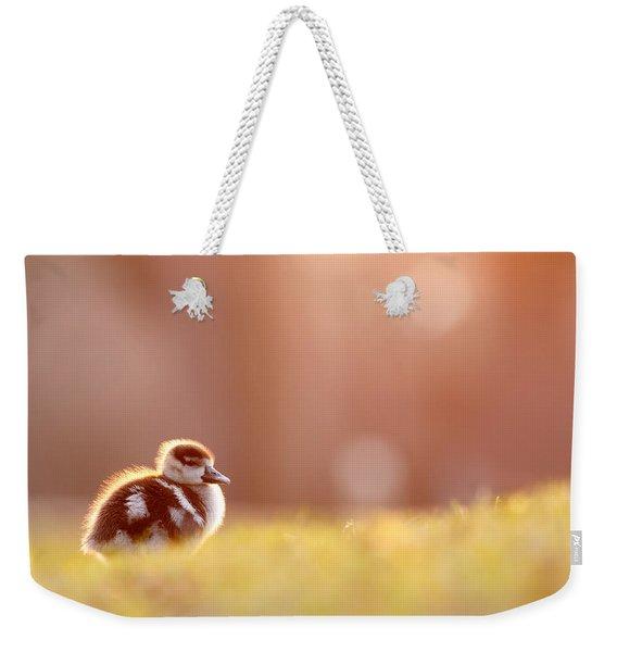 Little Furry Animal - Gosling In Warm Light Weekender Tote Bag