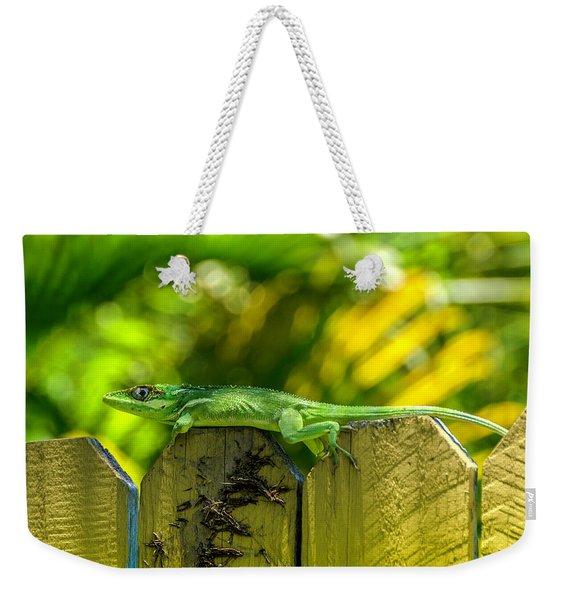 Little Green Visitor Weekender Tote Bag