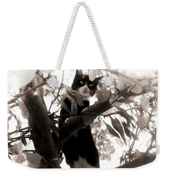 Little Kitty Weekender Tote Bag