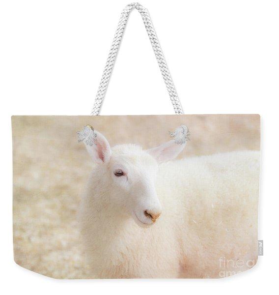 Little Lamb Weekender Tote Bag