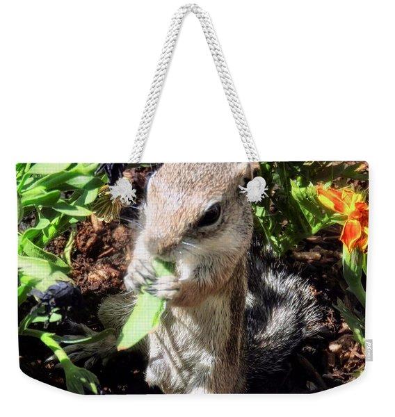 Little Nibbler Weekender Tote Bag