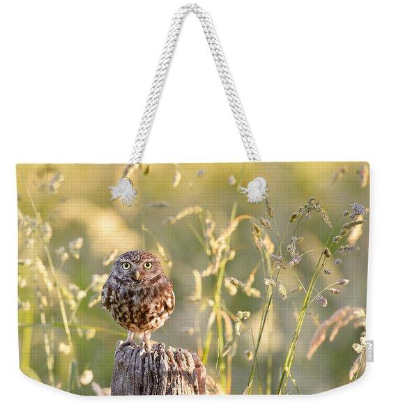 Little Owl Big World Weekender Tote Bag