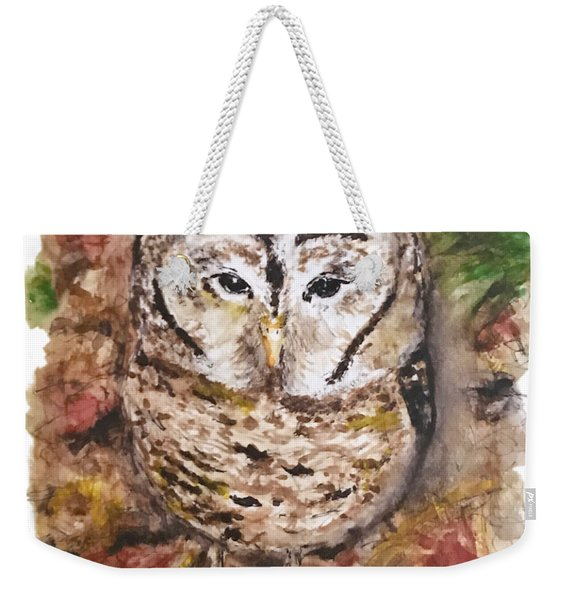 Little Owl Weekender Tote Bag