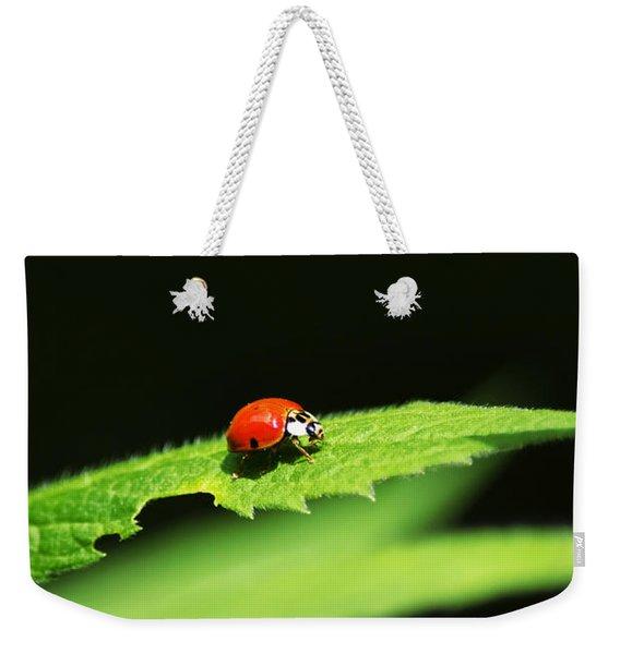 Little Red Ladybug On Green Leaf Weekender Tote Bag