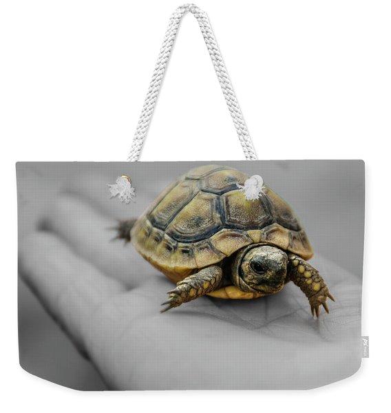 Little Turtle Baby Weekender Tote Bag