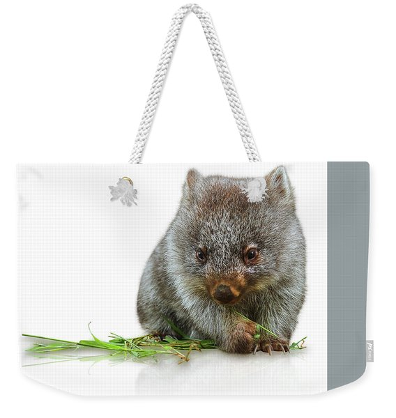 Weekender Tote Bag featuring the photograph Little Wombat by Benny Marty