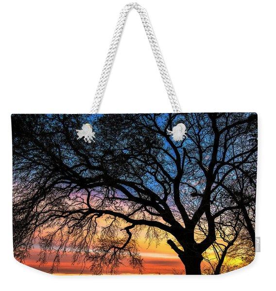 Live Oak Under A Rainbow Sky Weekender Tote Bag