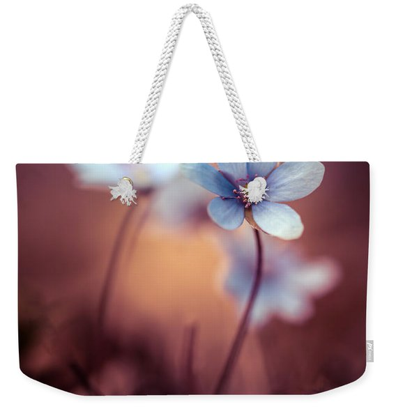 Weekender Tote Bag featuring the photograph Liverworts by Jaroslaw Blaminsky