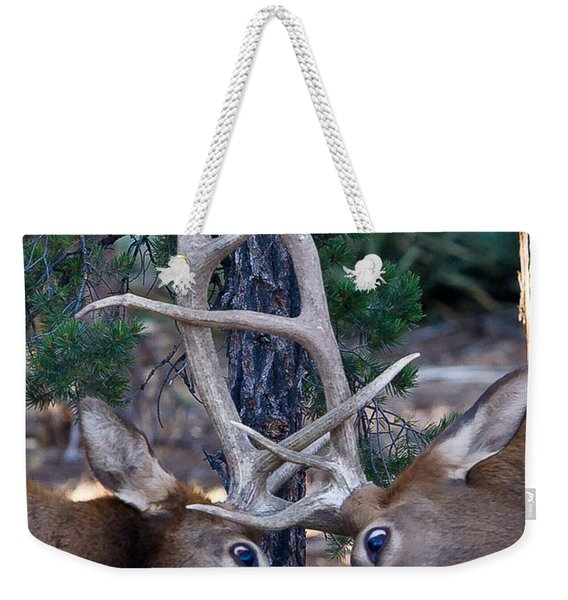 Locking Horns - Well Antlers Weekender Tote Bag