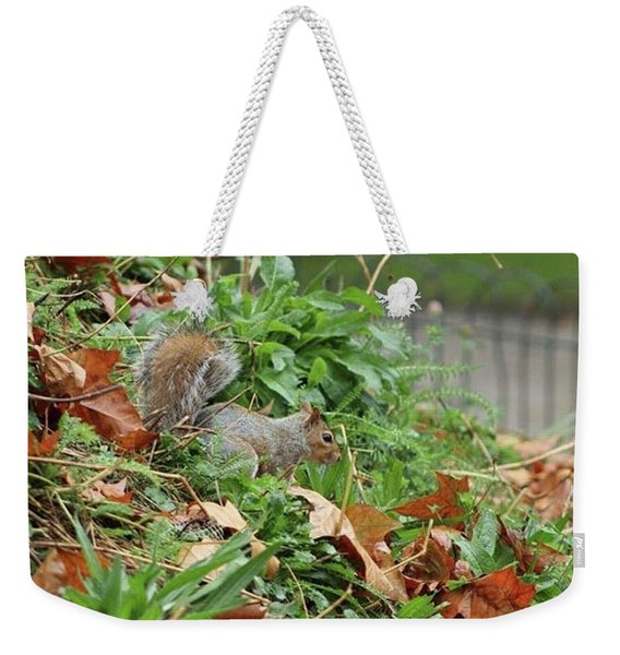 London Oct 1st 2016 #squirrel #animal Weekender Tote Bag