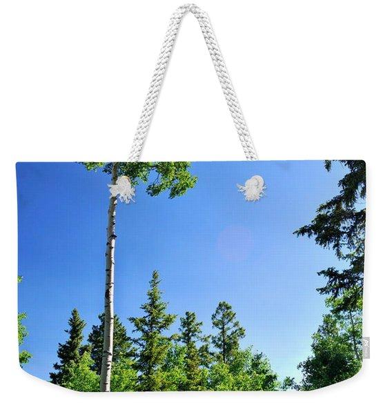 Lone Aspen Weekender Tote Bag
