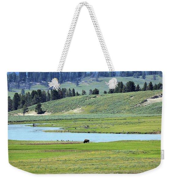 Lone Bison Out On The Prairie Weekender Tote Bag