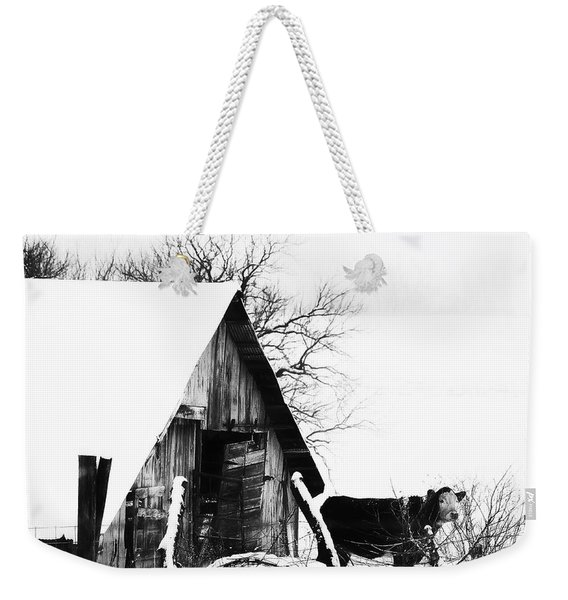 Lone Cow In Snowstorm Weekender Tote Bag
