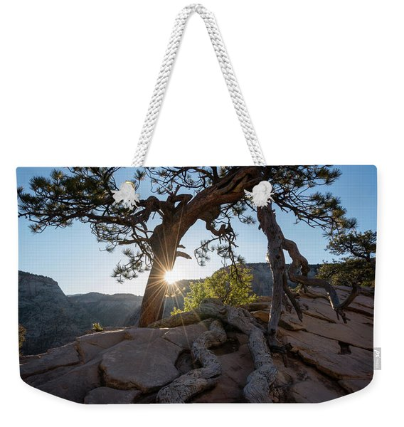 Lone Tree In Zion National Park Weekender Tote Bag