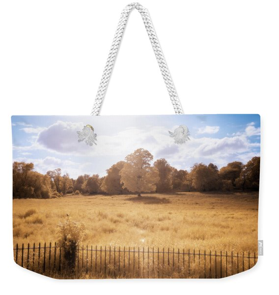Weekender Tote Bag featuring the photograph Lone Tree Ir by Brian Hale