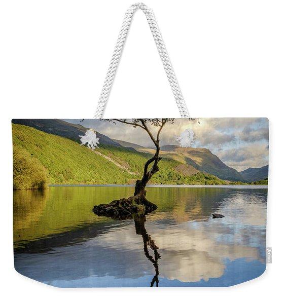Lone Tree, Llyn Padarn Weekender Tote Bag