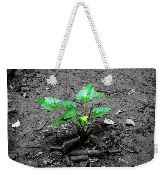 Lonely Plant Weekender Tote Bag