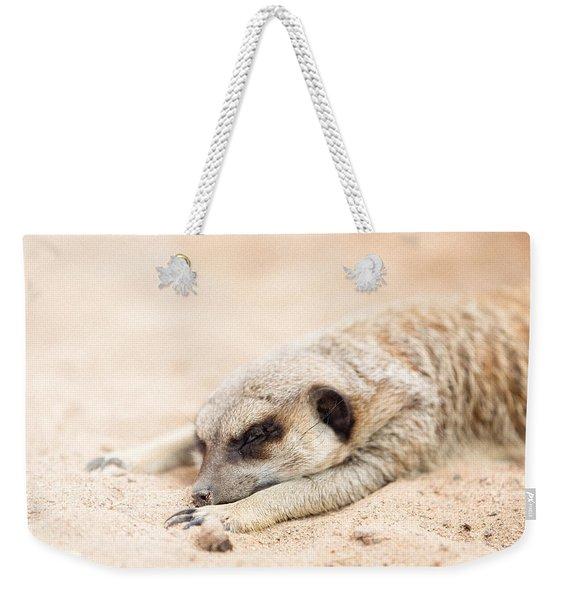 Long Day In Meerkat Village Weekender Tote Bag