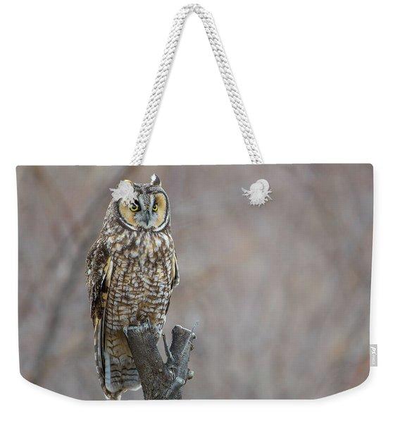 Long Eared Owl Weekender Tote Bag
