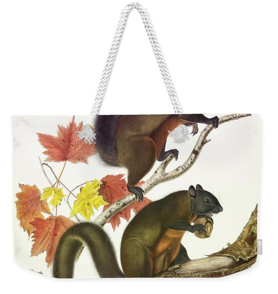 Long-haired Squirrel Weekender Tote Bag