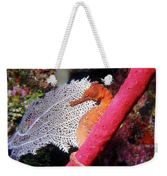 Longsnout Seahorse, Roatan, Honduras Weekender Tote Bag