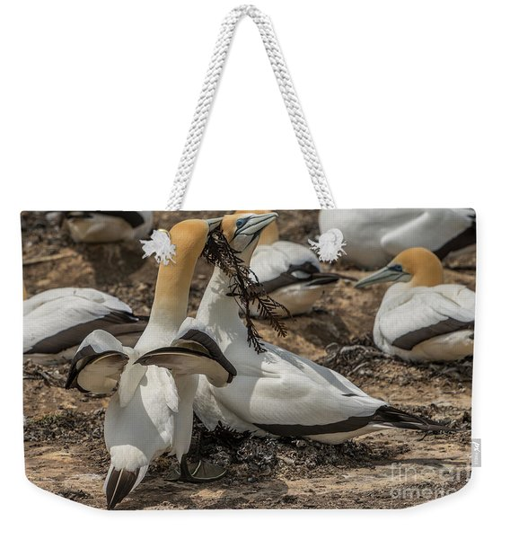 Look What I've Brought For You Weekender Tote Bag