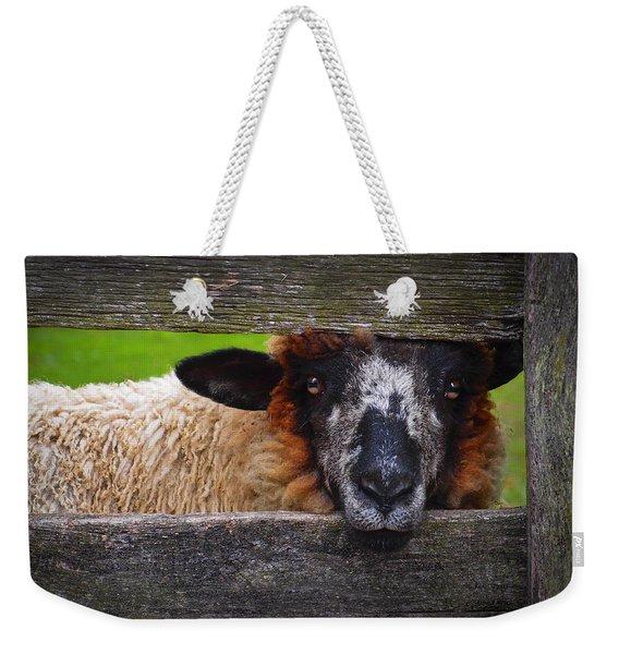 Lookin At Ewe Weekender Tote Bag