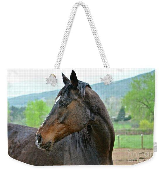 Looking Back Weekender Tote Bag
