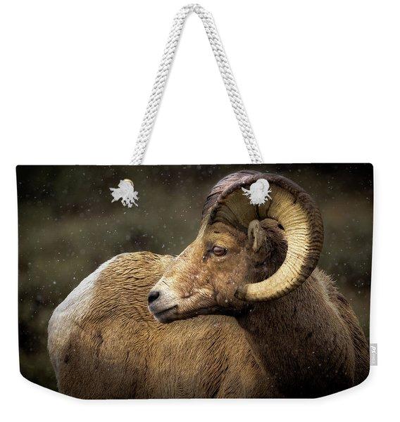 Looking Back - Bighorn Sheep Weekender Tote Bag