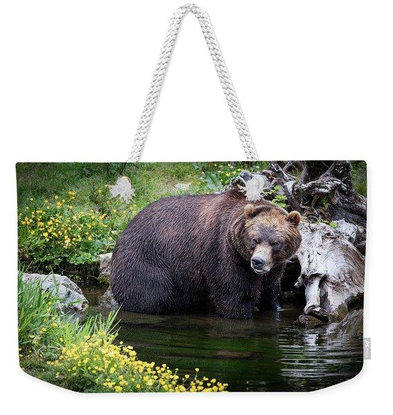 Looking For Dinner Weekender Tote Bag
