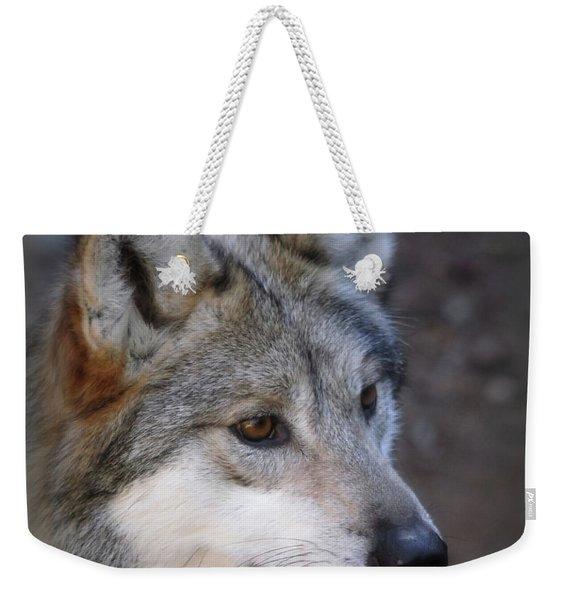 Looking Onward Weekender Tote Bag
