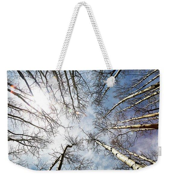Looking Up On Tall Birch Trees Weekender Tote Bag