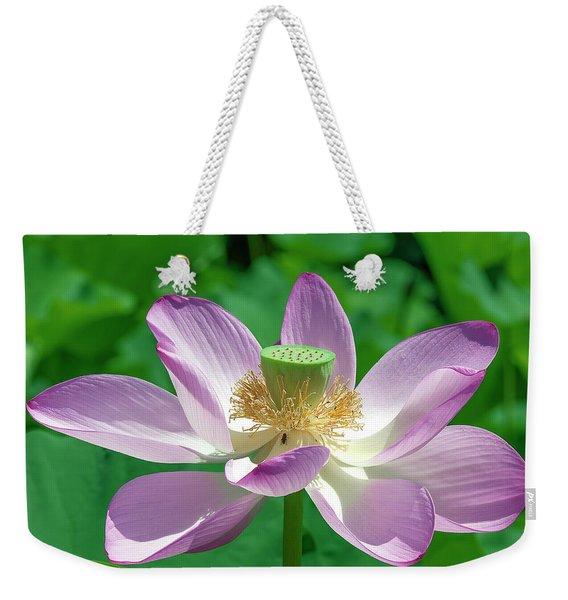 Lotus--fading IIi Dl0081 Weekender Tote Bag