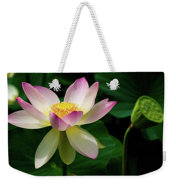 Weekender Tote Bag featuring the photograph Lotus Lily In Its Final Days by Dennis Dame