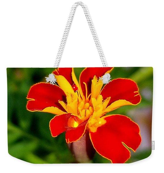 Lovely Little Flower Weekender Tote Bag