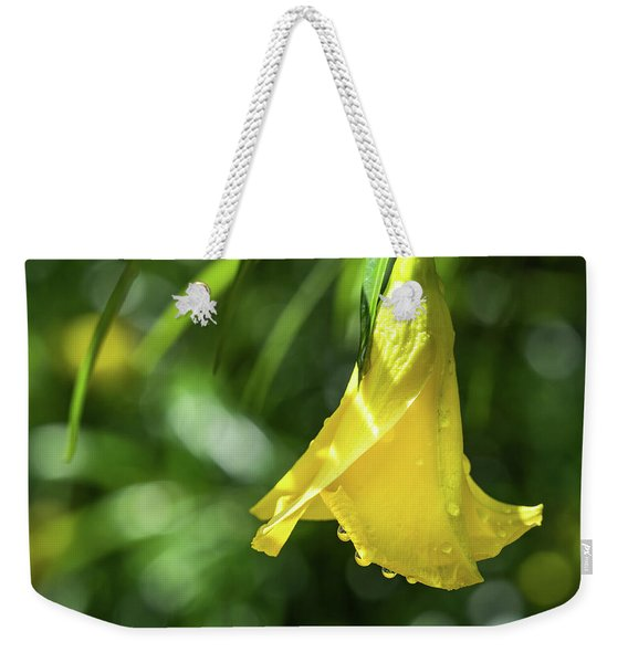 Weekender Tote Bag featuring the photograph Lucky Nut by Robin Zygelman