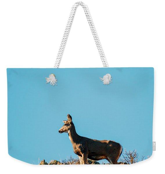 Lunar Doe Weekender Tote Bag