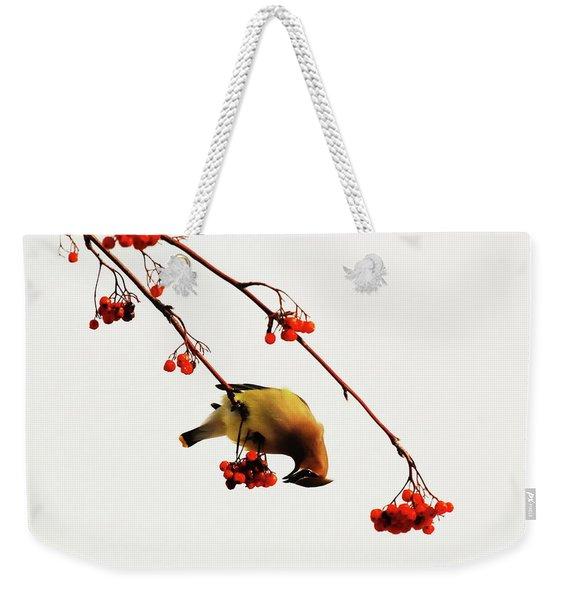 Lunchtime - Cedar Waxwing Weekender Tote Bag